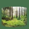 Waarzitje-Loofbos-20190902-Back