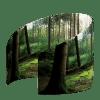 Waarzitje-Loofbos-20190902-Left
